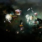 A Long Journey 02 - The black garden