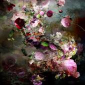 Pink Storm 04 - Alouette